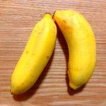 移住後に知った石垣島の隠れたおすすめ:島バナナ